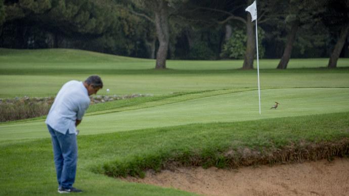 Portugal Golf Quinta da Marinha Golf Course Two Teetimes