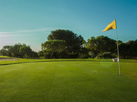 Alenda Golf - Green Fees