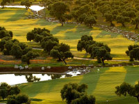 Arcos Golf Club & Country Estate - Green Fees