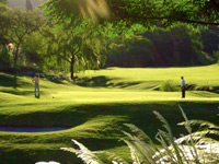 Real Club de Campo de Cordoba - Green Fees