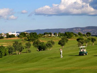 Fairplay Golf Course - Green Fees