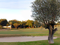 Club de Golf Playa Serena - Green Fees