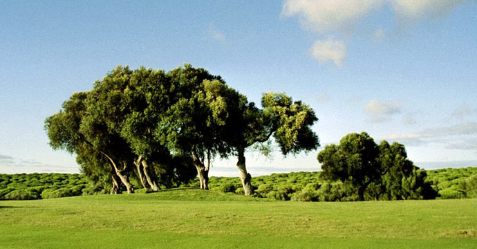 Portugal Golf Montenmedio Golf Course One Teetimes