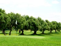 Sancti Petri Campano - Green Fees