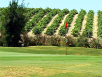Sherry Golf Jerez - Green Fees