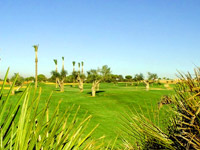 Villa Nueva Golf - Green Fees