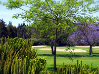 Mijas golf - Los Lagos - Green Fees