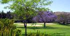 Mijas Golf - Los Lagos breaks