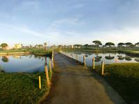 Sancti Petri Hills Golf - Green Fees