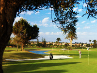 Fuerteventura Golf Course - Green Fees