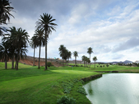 El Cortijo Club de Campo - Green Fees