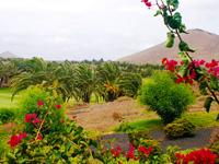 Golf Costa Teguise - Green Fees