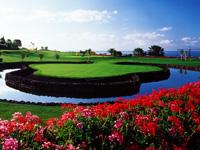 Amarilla Golf & Country Club - Green Fees