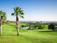 Golf del Sur - Green Fees