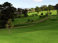 Real Club de Golf Tenerife - Green Fees