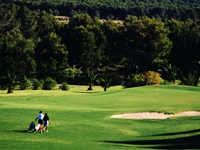 T Golf & Country Club - Green Fees