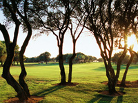 Son Antem Golf Course East - Green Fees
