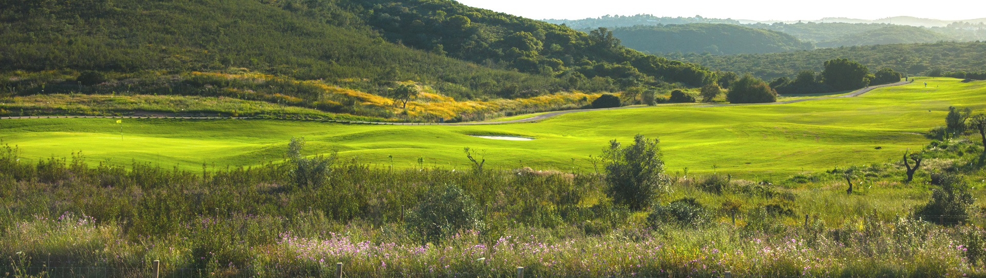 Alamos Golf Course - Photo 1