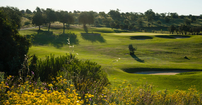 Alamos Golf Course - Photo 14