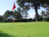 Open Alto Golf Course Page