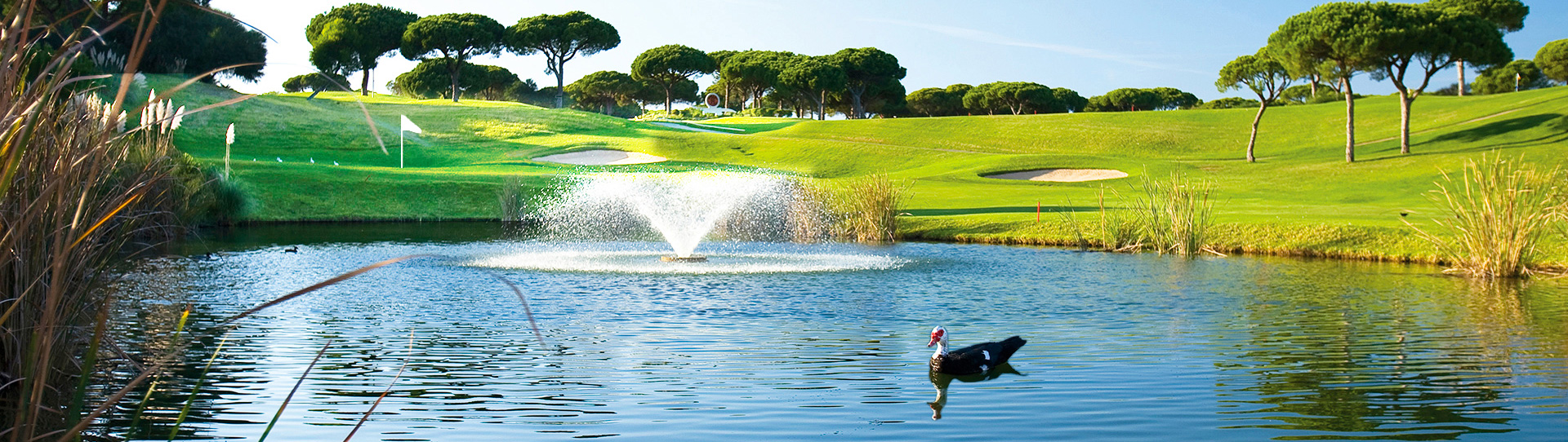 Vale do Lobo Royal - Photo 3