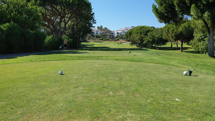 Pine Cliffs Golf - Photo 5