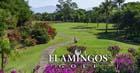 Flamingos Golf Course breaks