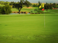 Hato Verde Club de Golf - Green Fees