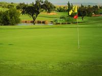 Hato Verde Club de Golf - Green Fees