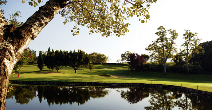 Portugal Golf Costa Brava Reed Golf Course Teetimes