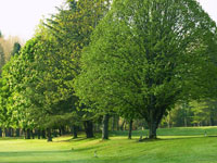 Vidago Palace Golf - Green Fees