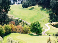 Golfe de Amarante - Green Fees